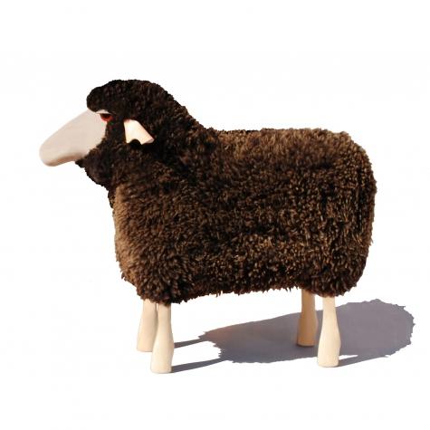 Ein Schaf für Zuhause